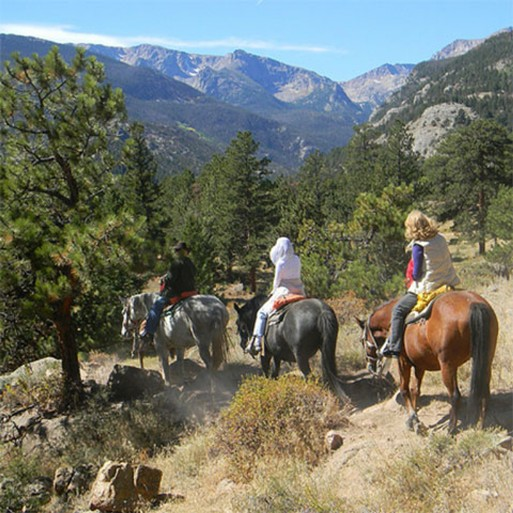 horse riding in the Sierra de las Nievess