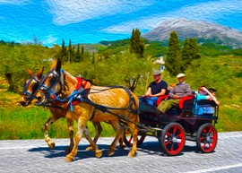 horse and cart with family.jpg