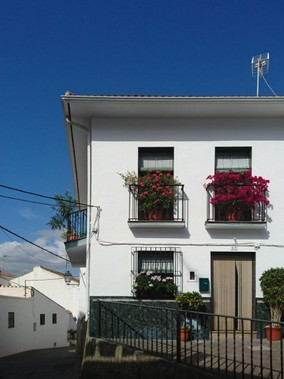 guaro-house-with-flowers.jpg