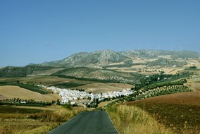 the-village-on-campo-road.jpg